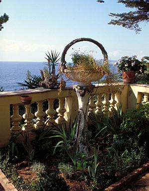 Détail : jardinière sur piédestal, en forme de panier, traitée en faux bois, située dans l'angle sud-ouest de la terrasse en terre-plein ouvrant au pied de la façade sud, depuis le nord.
